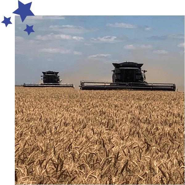 Fowler Agency | Insuring Farmers & Ranchers Since 1988 | Crop & P&C Insurance | TX & OK