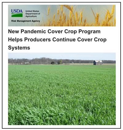Pandemic Cover Crop Program FAQ's